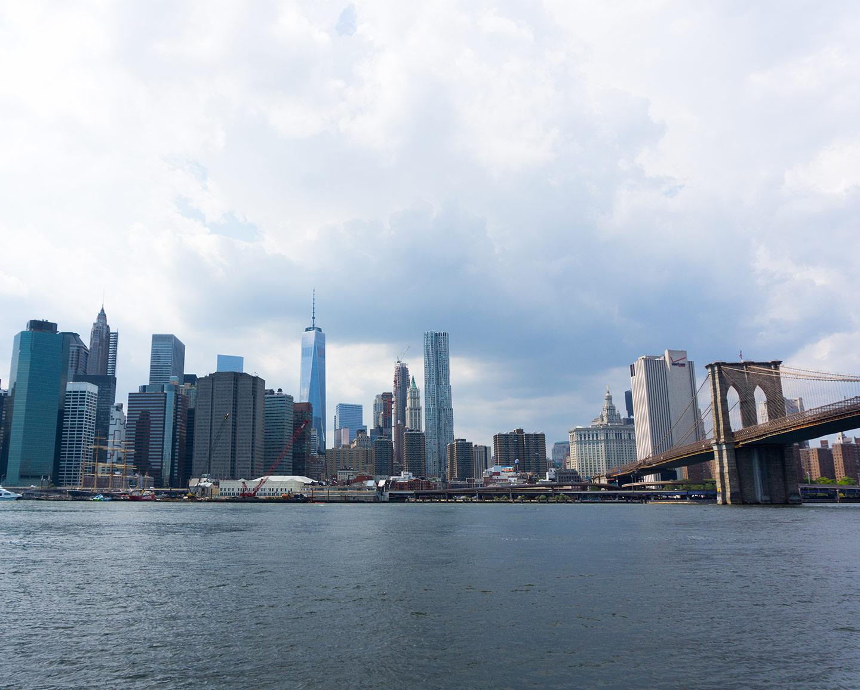 bridge and city